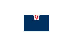 Logo Fini